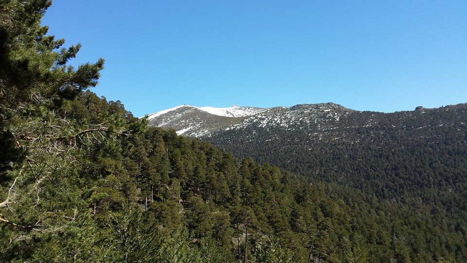 Photo du parc de Sierra Guadarrama